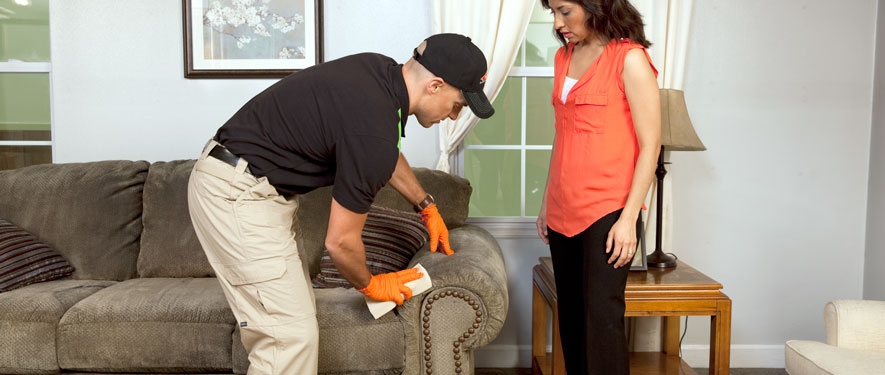 Nashville, TN carpet upholstery cleaning